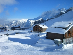 Chalet Montriond in Les Crosets